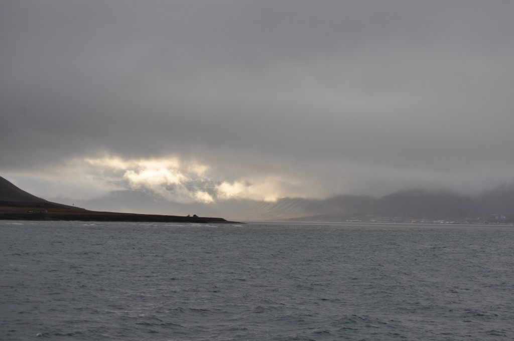 Svalbard 2015 (119)