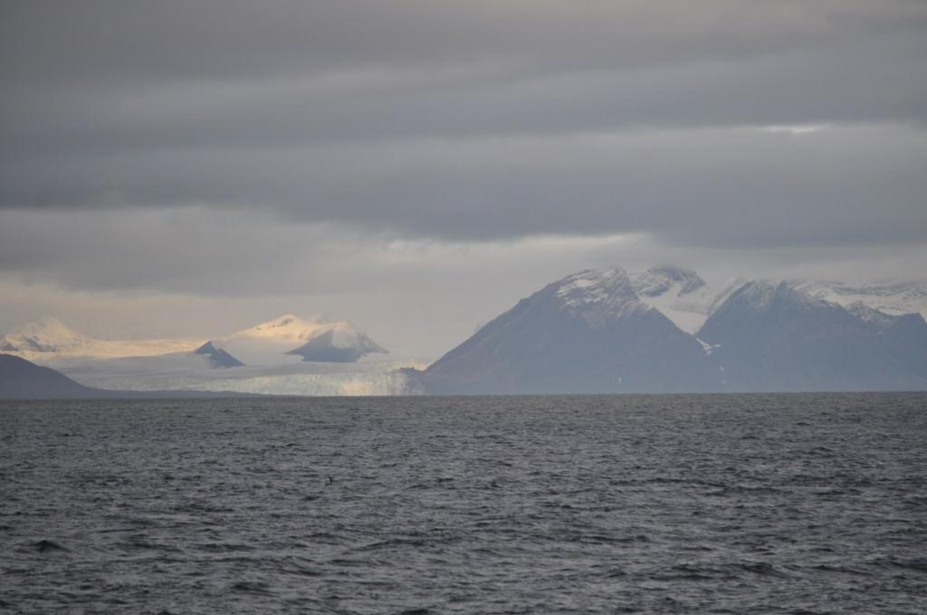 Svalbard 2015 (120)