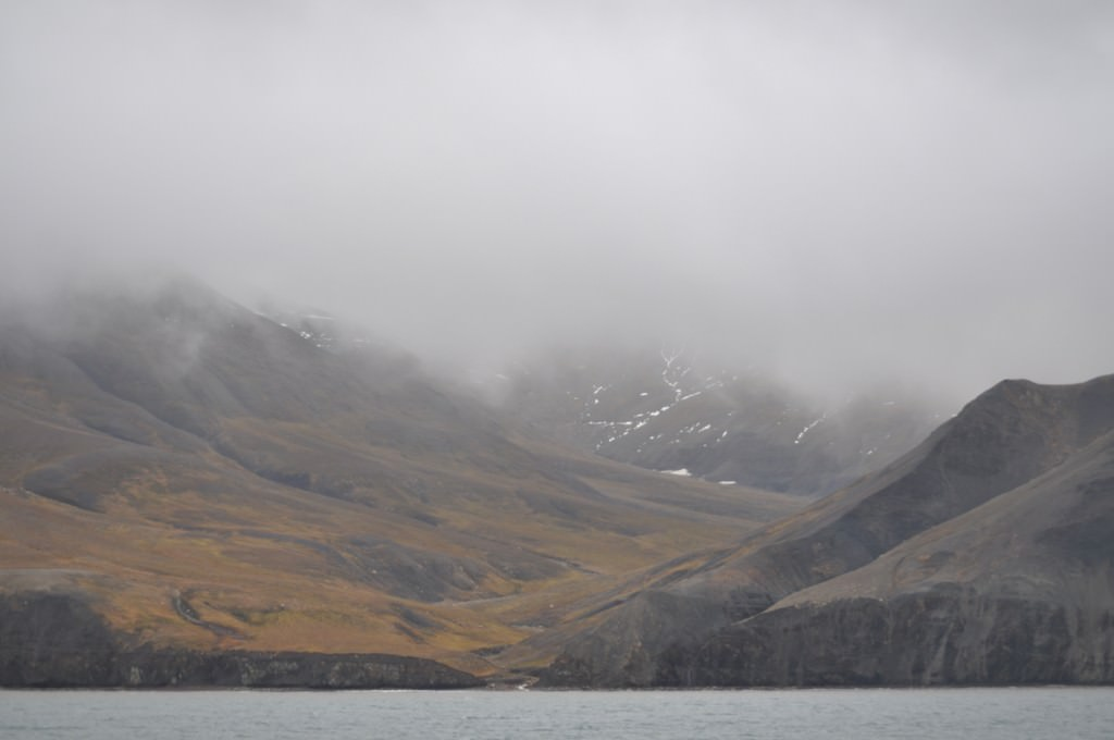 Svalbard 2015 (127)