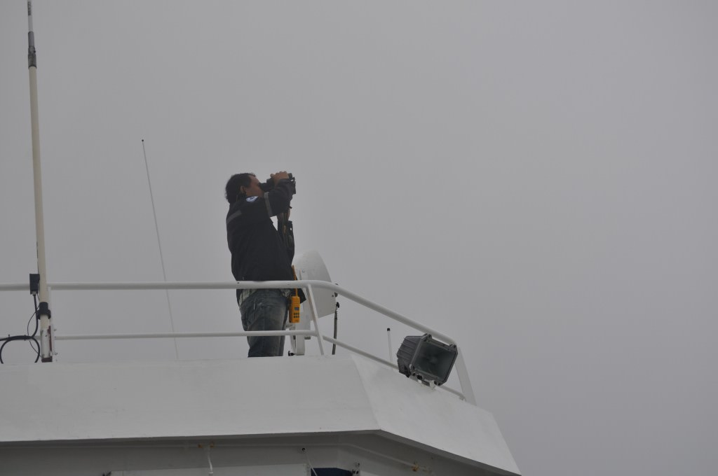 Svalbard 2015 (238)