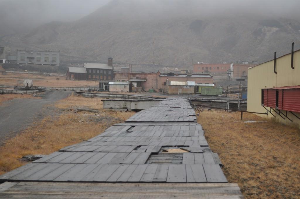 Svalbard 2015 (397)