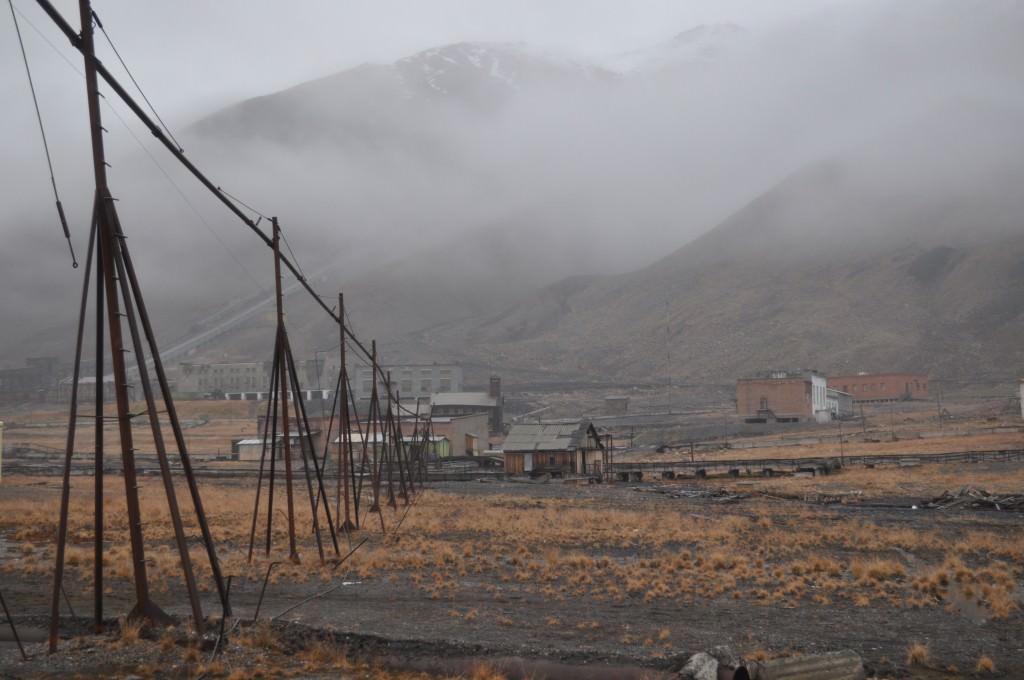 Svalbard 2015 (398)