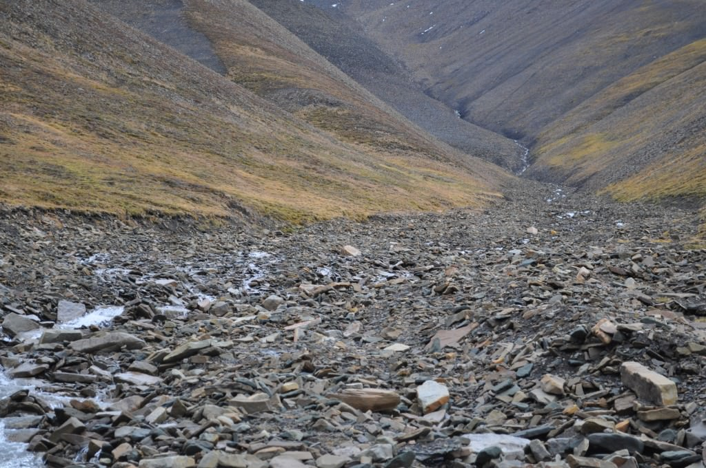 Svalbard 2015 (465)