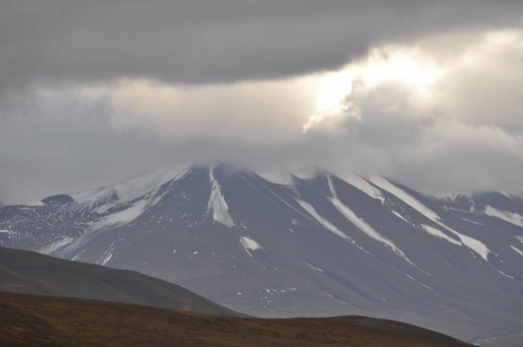 Svalbard 2015 (488)