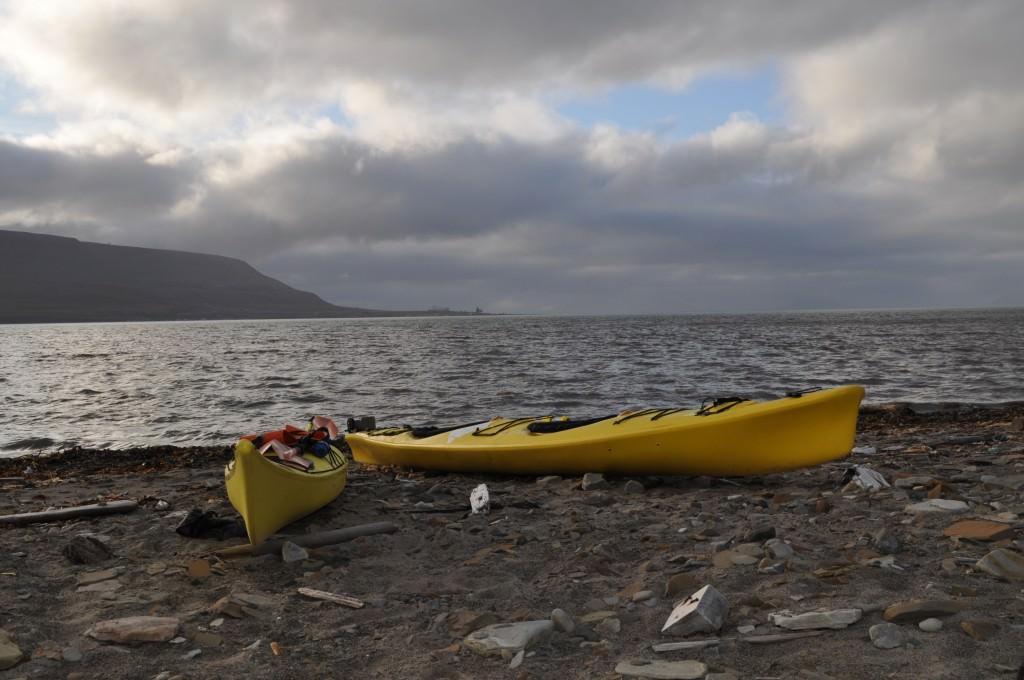 Svalbard 2015 (617)