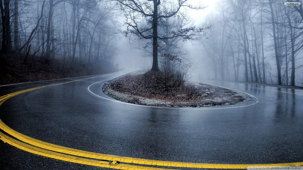 foggy-forest-road-wallpaper